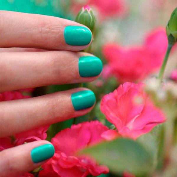 Green garden manucurist brest - Green Garden - Manucurist Green